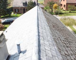 VS Caro Clean SPRL -  Démoussage toiture
